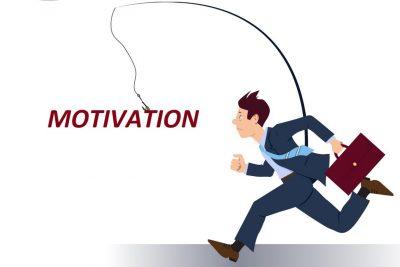 Мотивация поведения