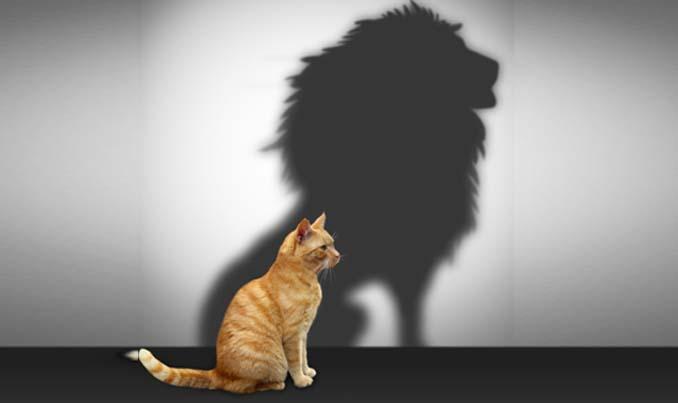 Самоуверенность – советы по ее повышению